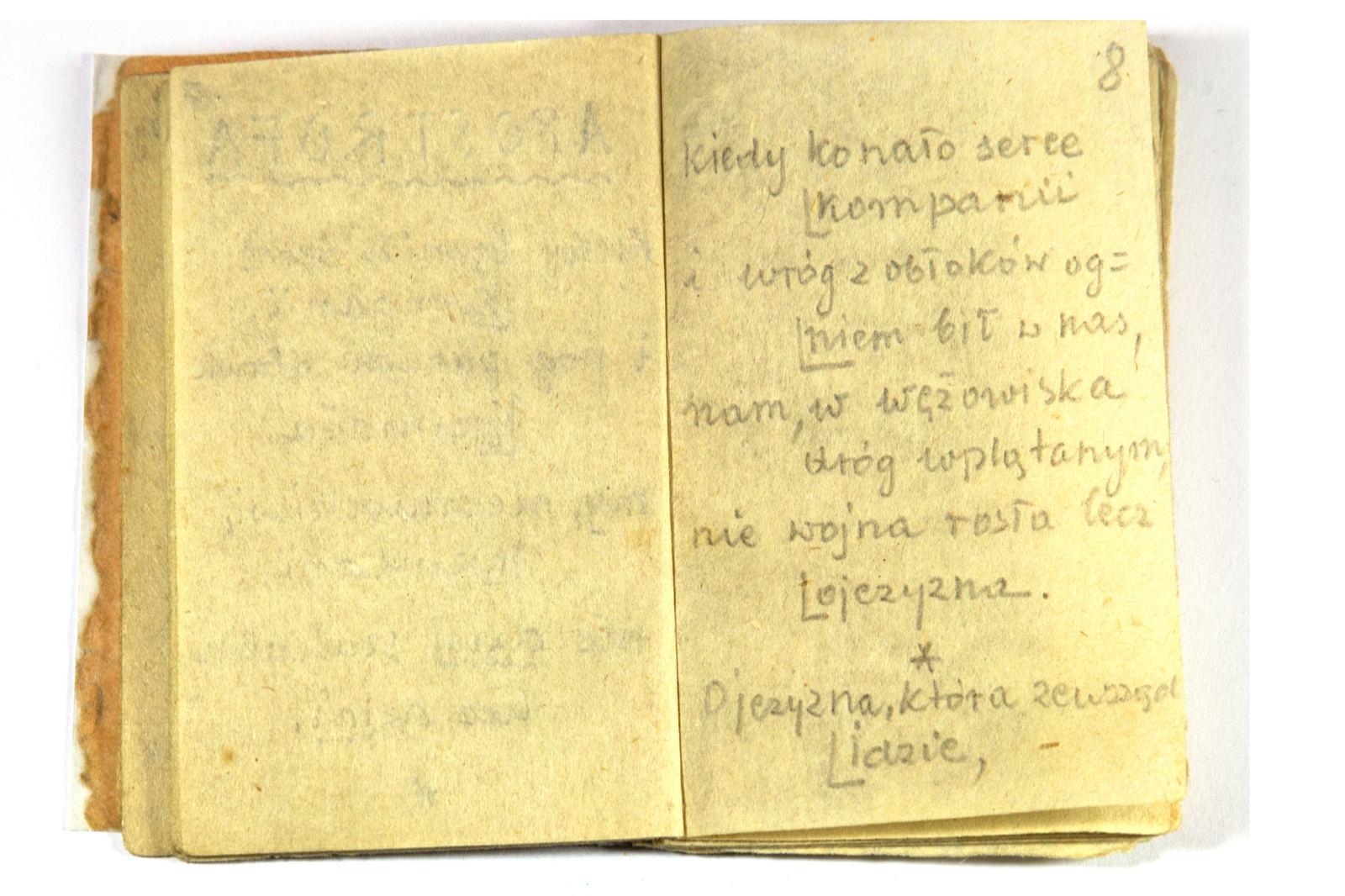 Lech Piwowar Wiersze